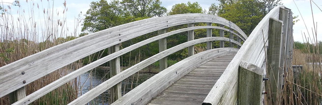 ryan park bridge